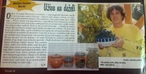 Zvezde revija o vrtnarjenju